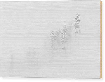 Winter Veil Wood Print by Mike  Dawson