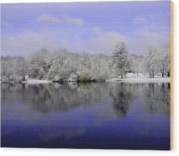 Winter View Wood Print by Karol Livote