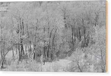 Winter Walk Wood Print