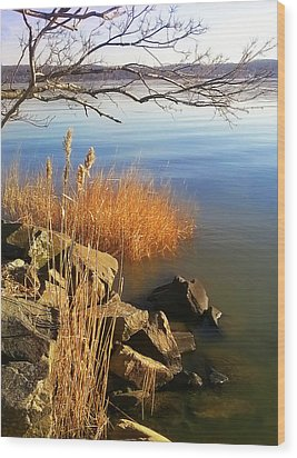 Winter Water Wood Print