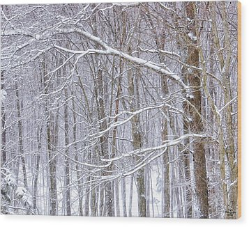Winter White Wood Print