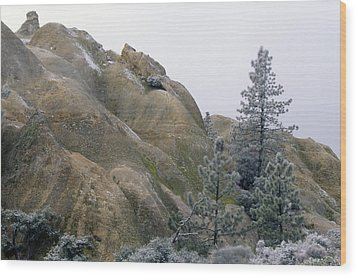 Winter Wind Wood Print by Soli Deo Gloria Wilderness And Wildlife Photography