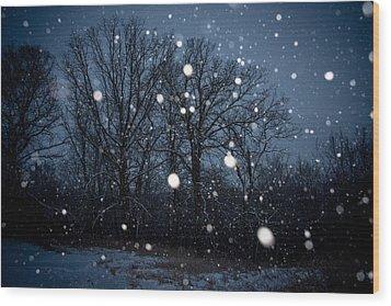 Winter Wonder Wood Print by Annette Berglund