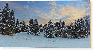 Wood Print featuring the photograph Winter Wonderland  by Emmanuel Panagiotakis