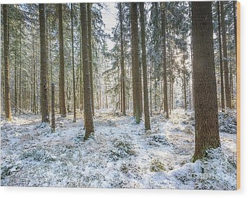 Wood Print featuring the photograph Winter Wonderland by Hannes Cmarits