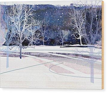 Winter Wonderland Wood Print by Paul Sachtleben