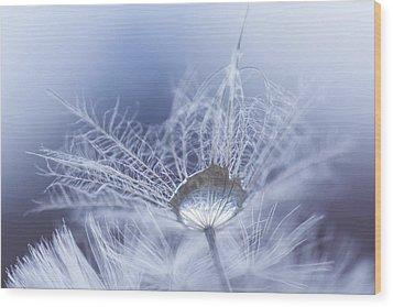 Wintermint Wood Print