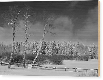 Wood Print featuring the photograph Winters Allure.. by Al Swasey