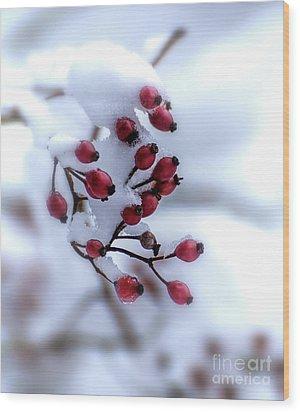 Winter's Color Wood Print