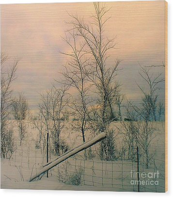 Wood Print featuring the photograph Winter's Face by Elfriede Fulda