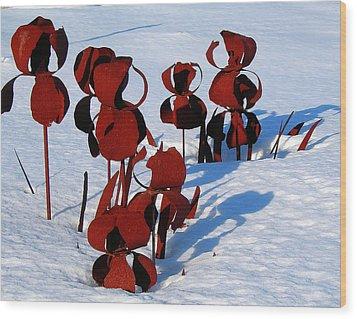 Wood Print featuring the photograph Winter's Garden by Randy Rosenberger