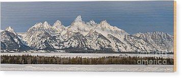 Winter's Majesty Wood Print