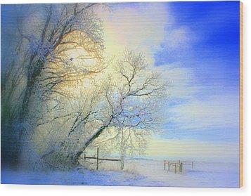 Winters Pretty Presents Wood Print by Julie Lueders
