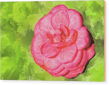 Wood Print featuring the mixed media Winter's Rose - The Camellia by Mark Tisdale