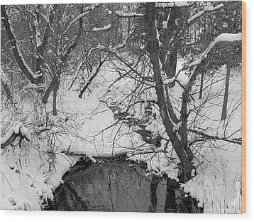 Wood Print featuring the photograph Winter's Touch by Scott Kingery