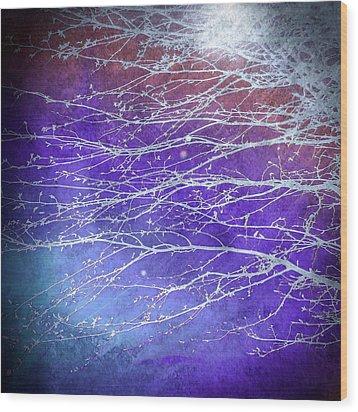 Winter's Twilight Wood Print