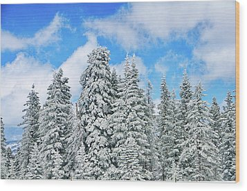 Winterscape Wood Print by Jeff Kolker
