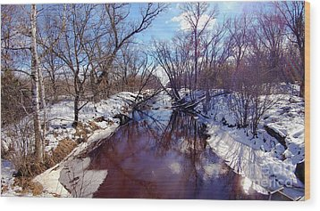 Wintertime In Necedah  Wood Print by Ricky L Jones