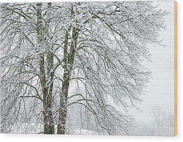 Wintertime In West Virginia Wood Print by Thomas R Fletcher