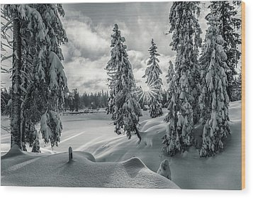 Winter Wonderland Harz In Monochrome Wood Print