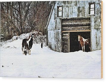 Wood Print featuring the photograph Wintery Day by Gary Smith