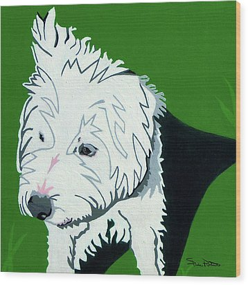 Wirehaired Jack Russell Terrier Wood Print by Slade Roberts