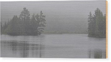 Wisconsin In Grey And Green Wood Print