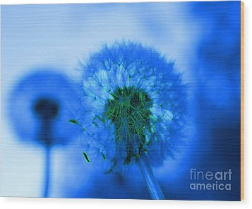 Wish Away The Blues Wood Print by Valerie Fuqua