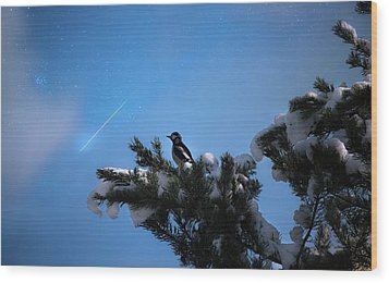 Wish Upon A Shooting Star Wood Print