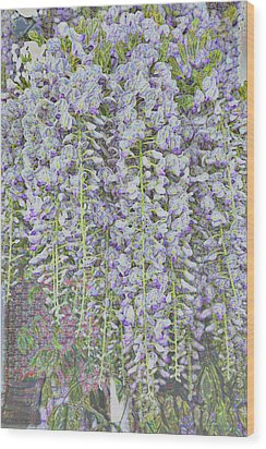 Wood Print featuring the photograph Wisteria Before The Hail by Nareeta Martin