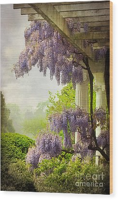 Wisteria In A Spring Shower Two Wood Print by Susan Isakson