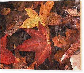 With Love - Autumn Pond Wood Print by Theresa  Asher