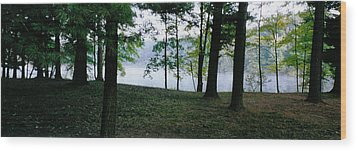 Within Sight Of A Lake Wood Print by Tom Hefko