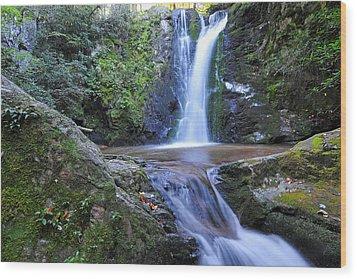 Wolf Creek Falls Wood Print by Alan Lenk