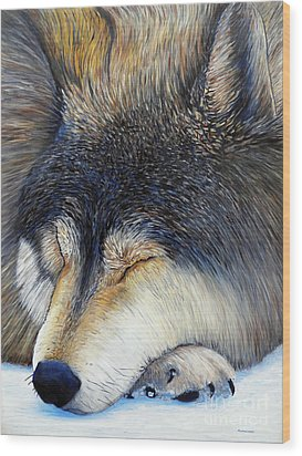 Wolf Dreams Wood Print by Brian  Commerford