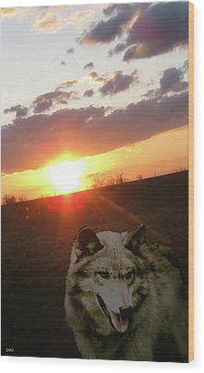 Wolf Sunset Wood Print by Debra     Vatalaro