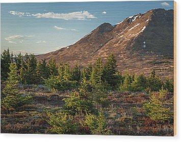 Wolverine Mt Near Sunset Wood Print