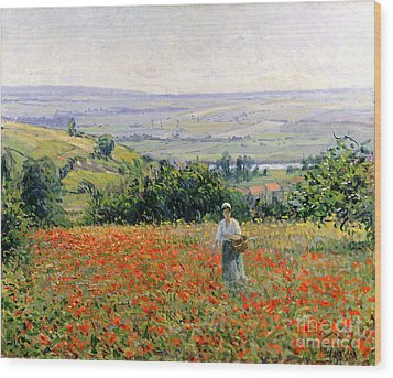 Woman In A Poppy Field Wood Print by Leon Giran Max