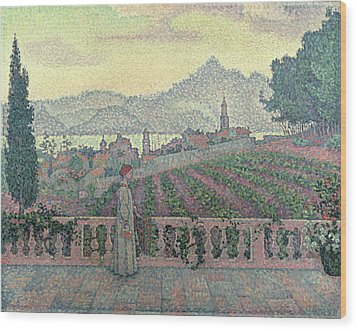 Woman On The Terrace Wood Print by Paul Signac