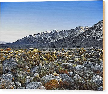 Wood Print featuring the painting Wonoga Peak by Larry Darnell