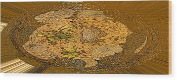 Wood Print featuring the photograph Wood Abstracted by Lenore Senior