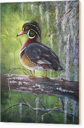 Wood Duck Wood Print by Mary McCullah