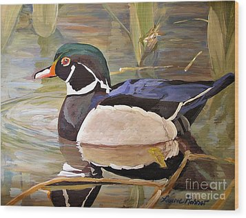 Wood Duck On Pond Wood Print