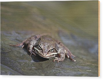 Wood Print featuring the photograph Wood Frog Close Up by Christina Rollo
