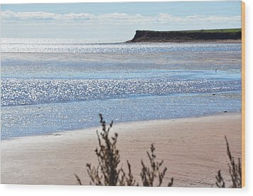 Wood Print featuring the photograph Wood Islands Beach by Kim Prowse