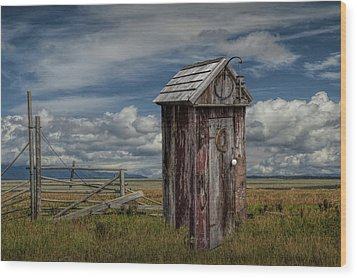 Wood Outhouse Out West Wood Print by Randall Nyhof