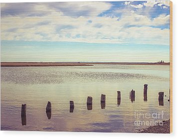 Wood Print featuring the photograph Wood Pilings In Still Water by Colleen Kammerer