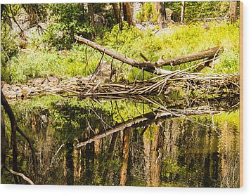 Wood Reflections Wood Print by Brian Williamson