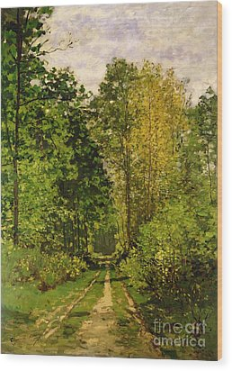 Wooded Path Wood Print by Claude Monet