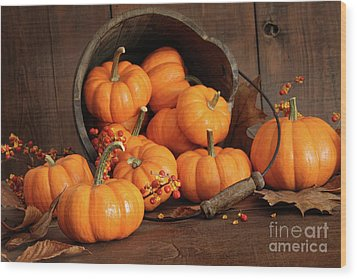 Wooden Bucket Filled With Tiny Pumpkins Wood Print by Sandra Cunningham